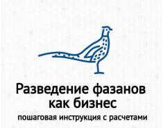 Разведение фазанов как бизнес. Пошаговая инструкция