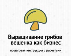 Выращивание грибов вешенка как бизнес