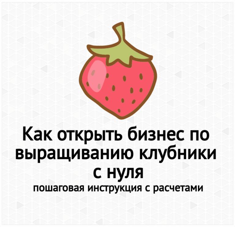 Бизнес план по выращиванию клубнику в теплицах 47