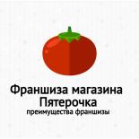 Франшиза магазина Пятерочка: цены, условия покупки