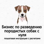 Бизнес по разведению породистых собак с нуля