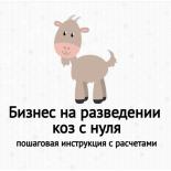 Бизнес на разведении коз с нуля: пошаговая инструкция и оценка