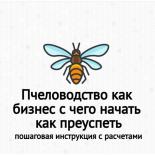 Пчеловодство как бизнес с чего начать как преуспеть: пошаговый бизнес-план