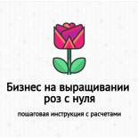 Бизнес на выращивании роз с нуля: затраты, доходность