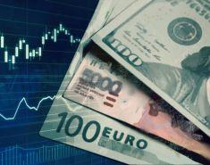 Инвестиции в валюте: как вложить доллары на Московской бирже