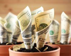 Куда можно инвестировать небольшую сумму: ТОП безопасных вариантов