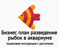 Бизнес-план разведения рыбок (Гуппи) в аквариуме. Пример