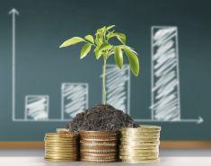 5 советов по выбору первых инвестиций для тех, у кого мало денег
