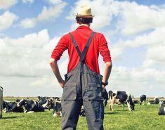 """Грант для начинающих фермеров может получить любой, кто """"горит желанием"""" начать?"""