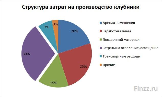 Бизнес по выращиванию клубники: структура затрат