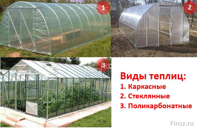 Виды теплиц для выращивания клубники