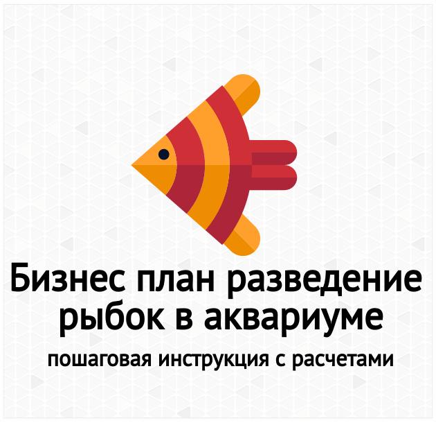 Бизнес-план разведения рыбок (гуппи) в аквариуме