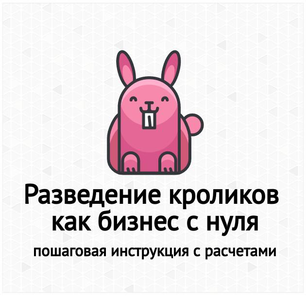 Разведение кроликов как бизнес с нуля