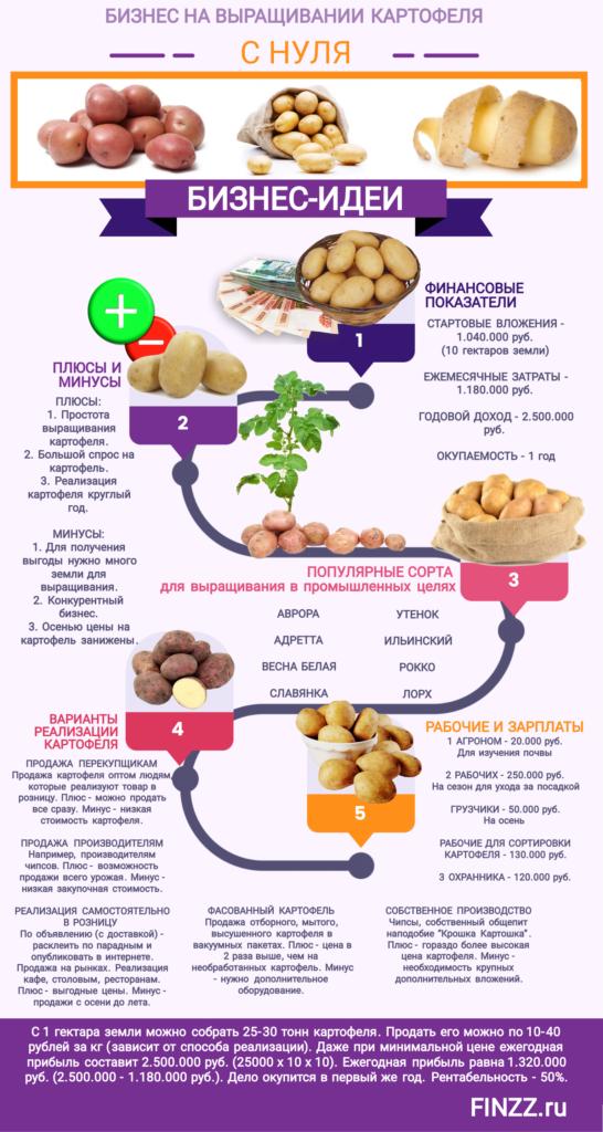 biznes-na-vyrashchivanii-kartofelya