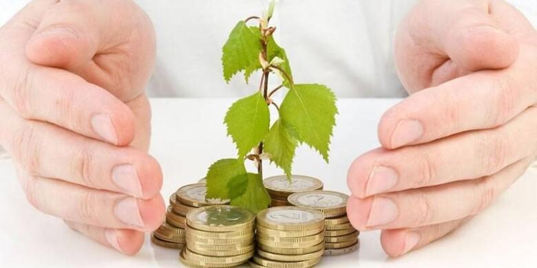 Что будет, если инвестировать всего 1000 рублей в месяц
