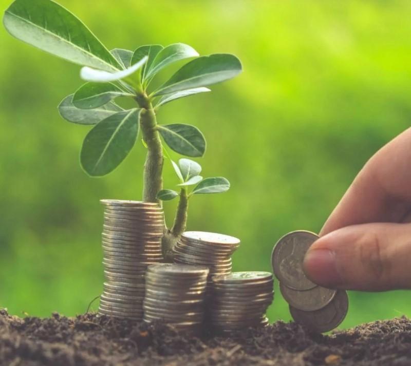 Инвестиции могут быть небольшими, но постоянными